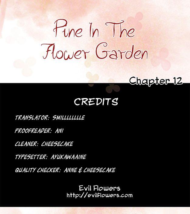 Pine in the Flower Garden 12 Page 1