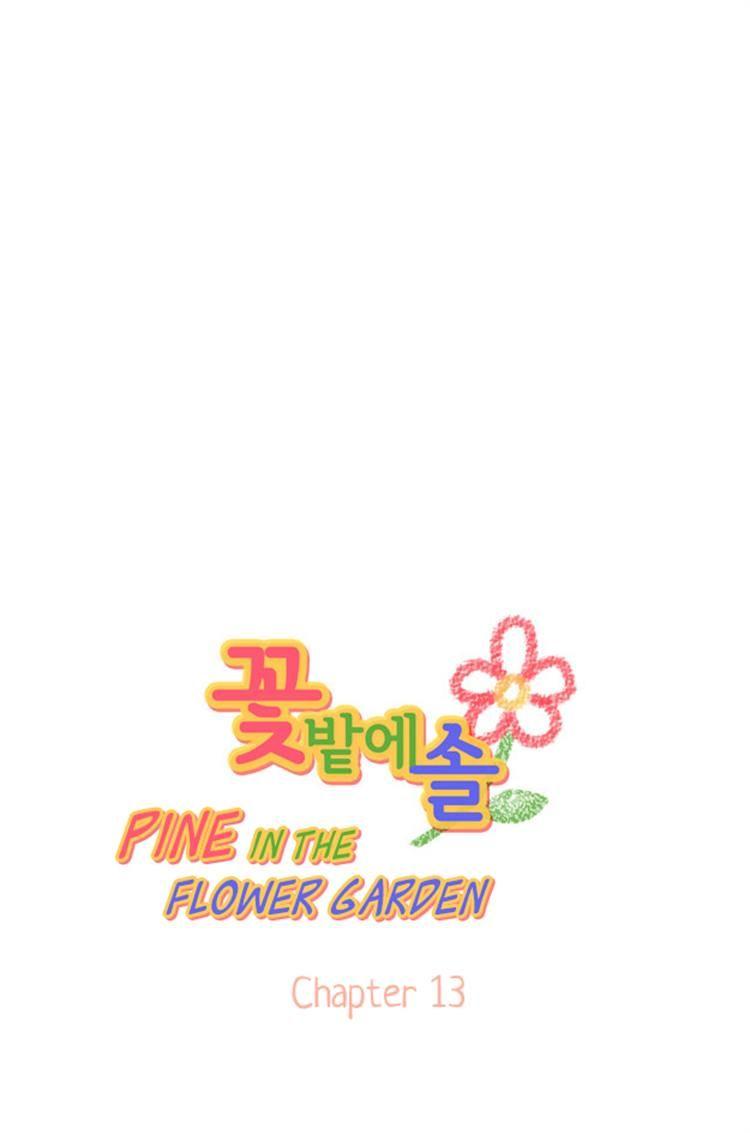 Pine in the Flower Garden 13 Page 1