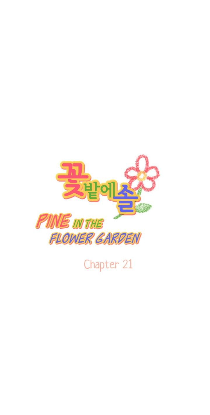 Pine in the Flower Garden 21 Page 1