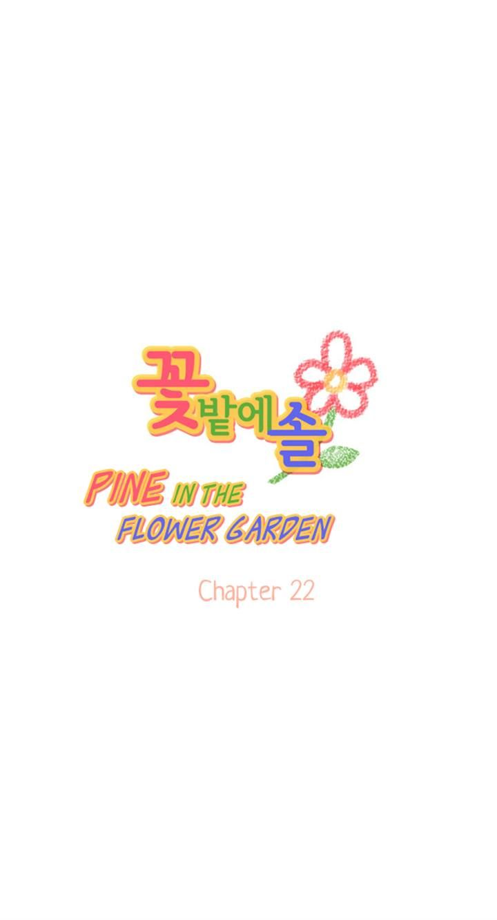 Pine in the Flower Garden 22 Page 1
