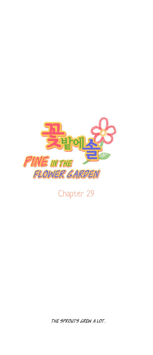 Pine in the Flower Garden 29 Page 2