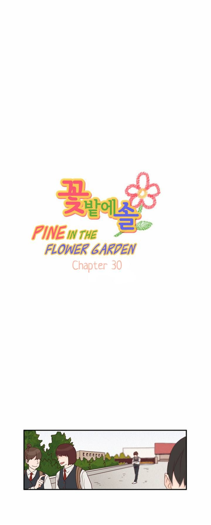 Pine in the Flower Garden 30 Page 1