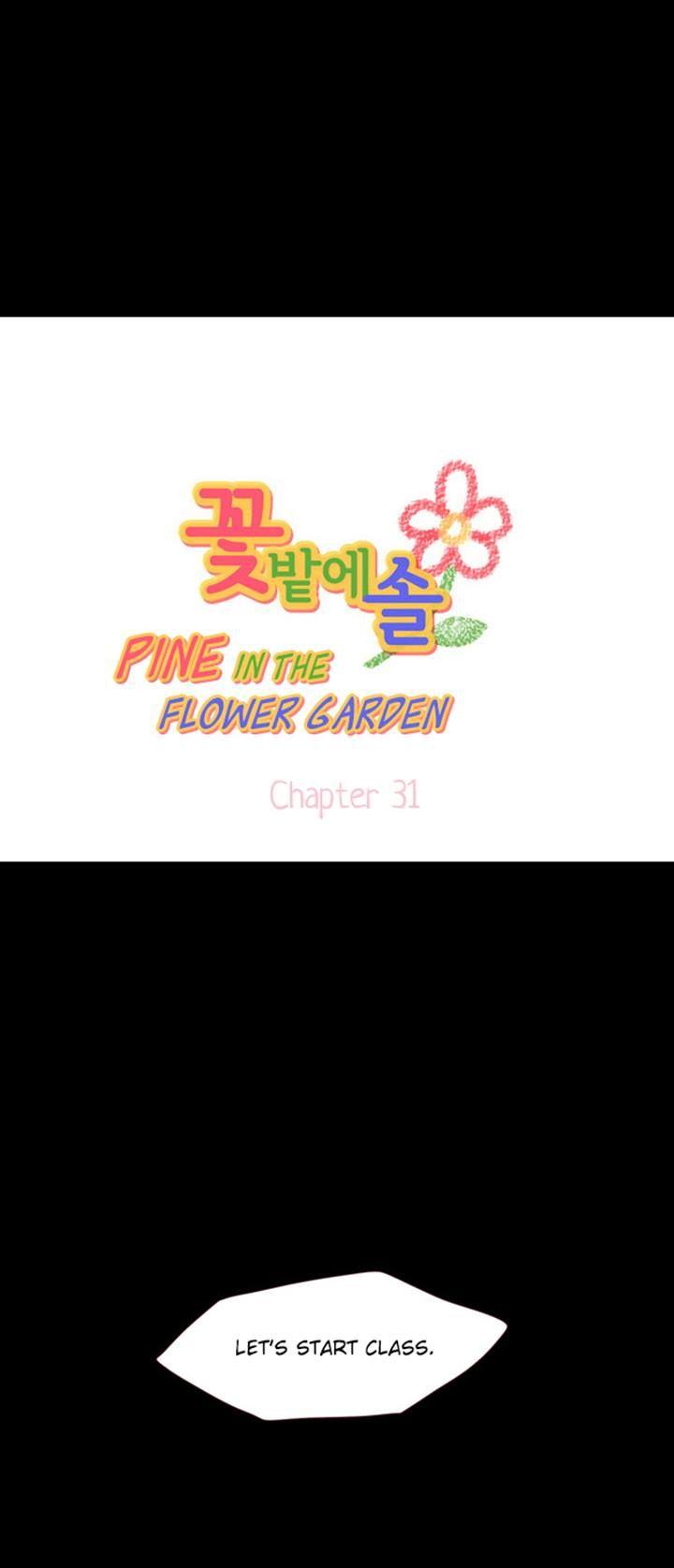 Pine in the Flower Garden 31 Page 1