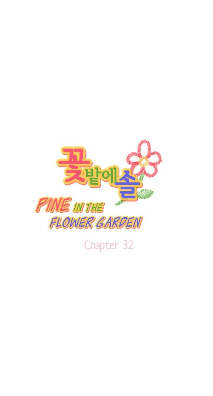Pine in the Flower Garden 32 Page 1