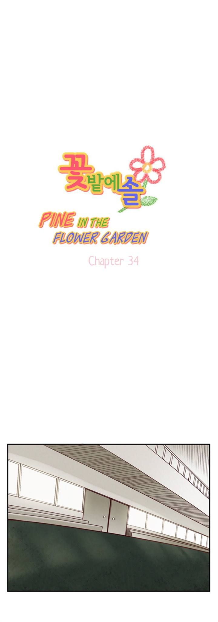 Pine in the Flower Garden 34 Page 1