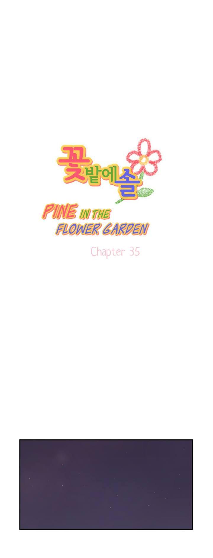 Pine in the Flower Garden 35 Page 1