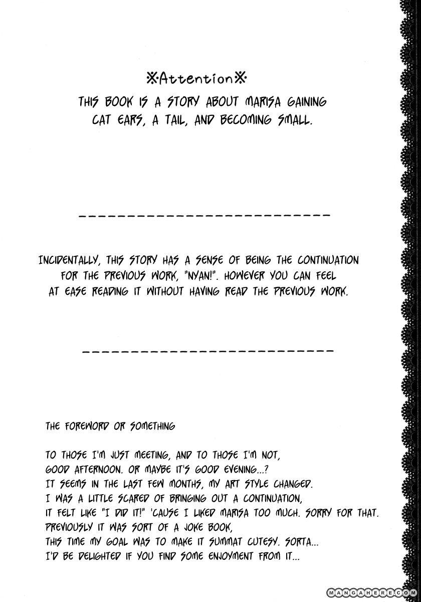 Touhou dj - Nyan Nyan 1 Page 3