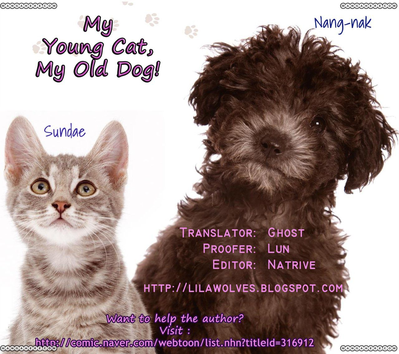 My Young Cat and My Old Dog 13 Page 3