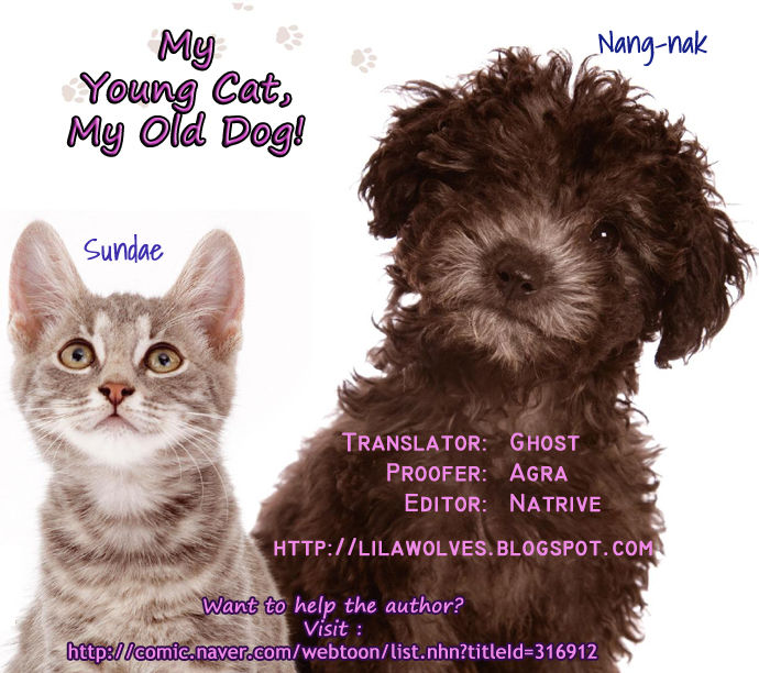 My Young Cat and My Old Dog 35 Page 4