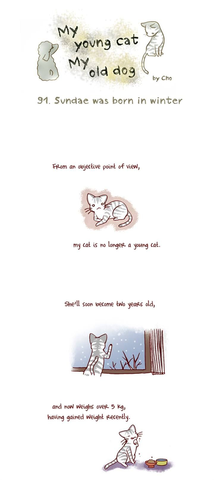 My Young Cat and My Old Dog 91 Page 1
