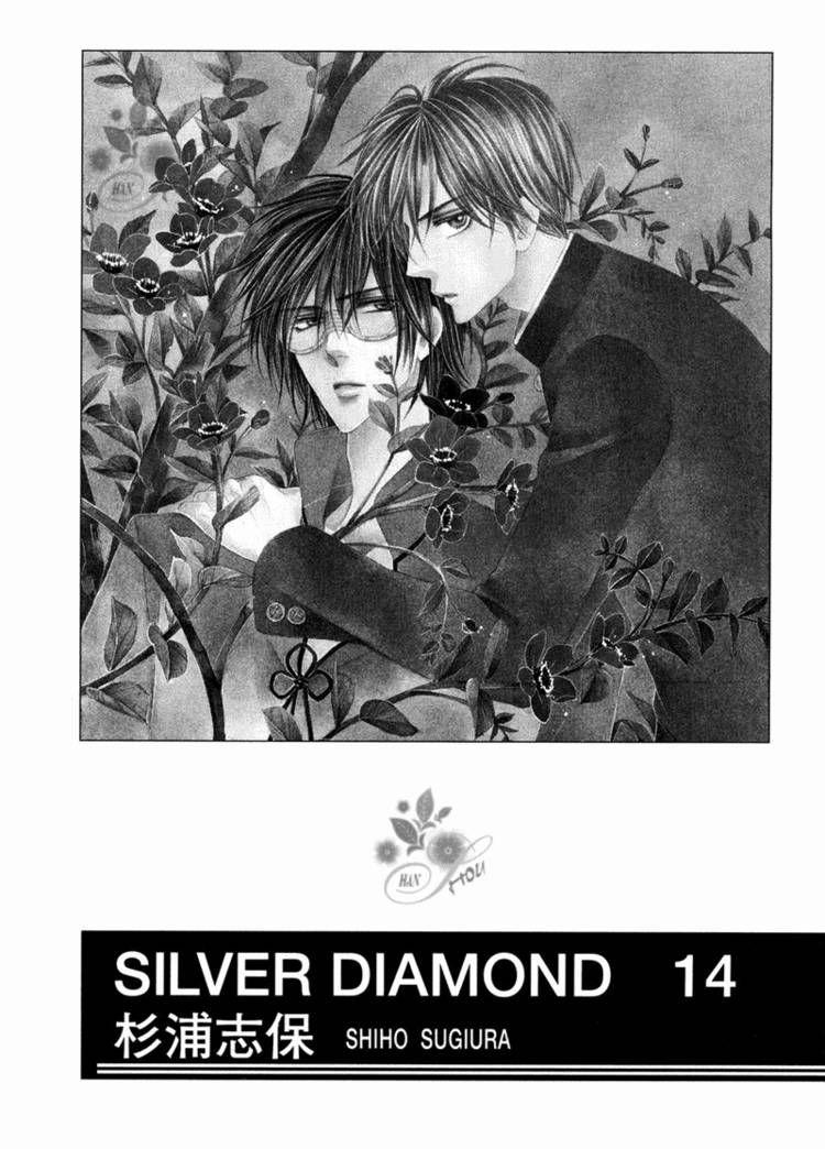 Silver Diamond 40 Page 3