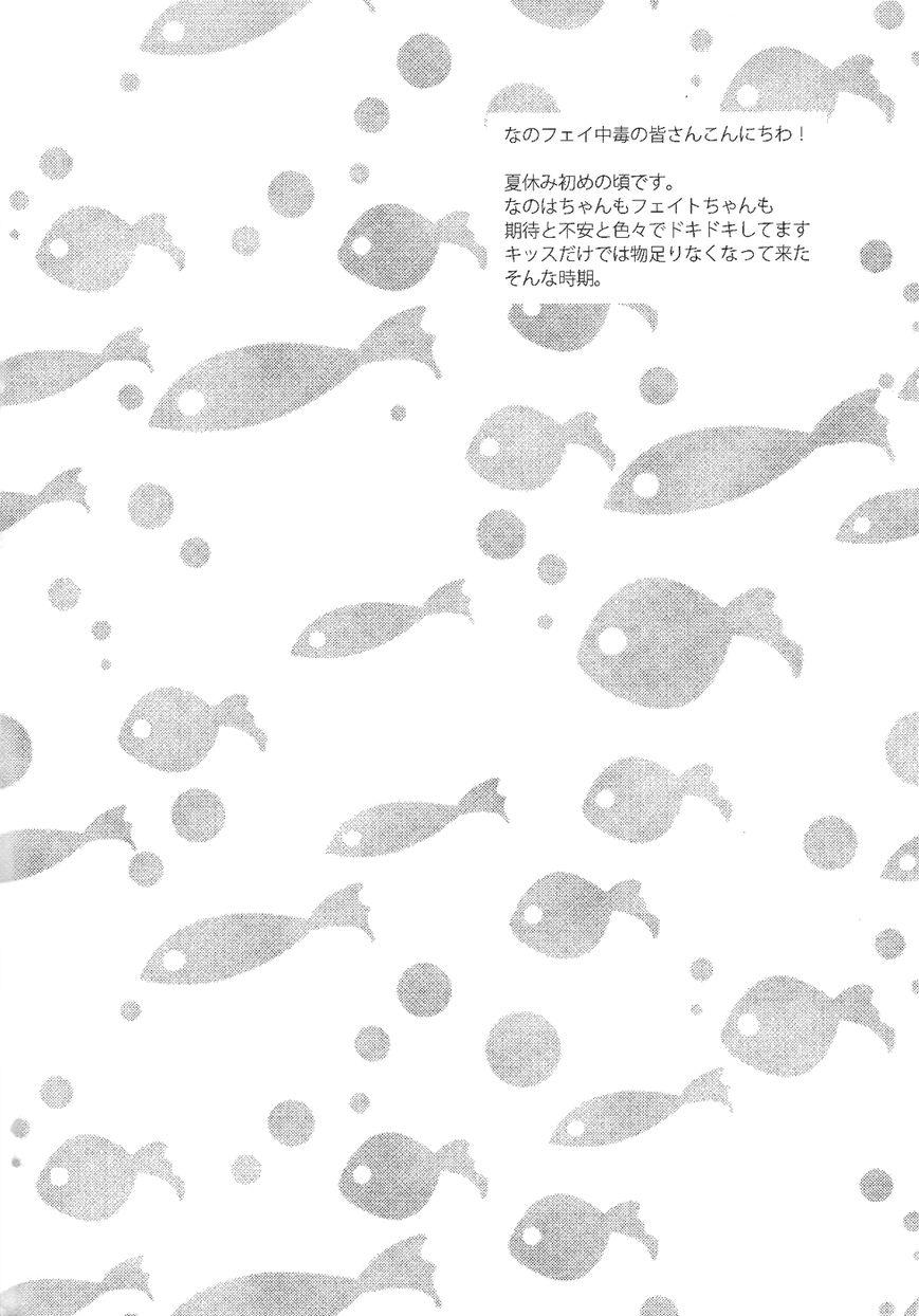 Nanoha dj - Love Countdown 1 Page 2