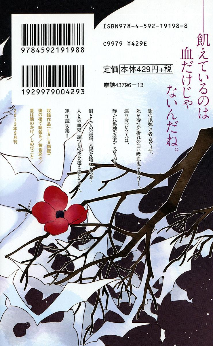 Hoshi wa Akatsuki no Kage 2 Page 3