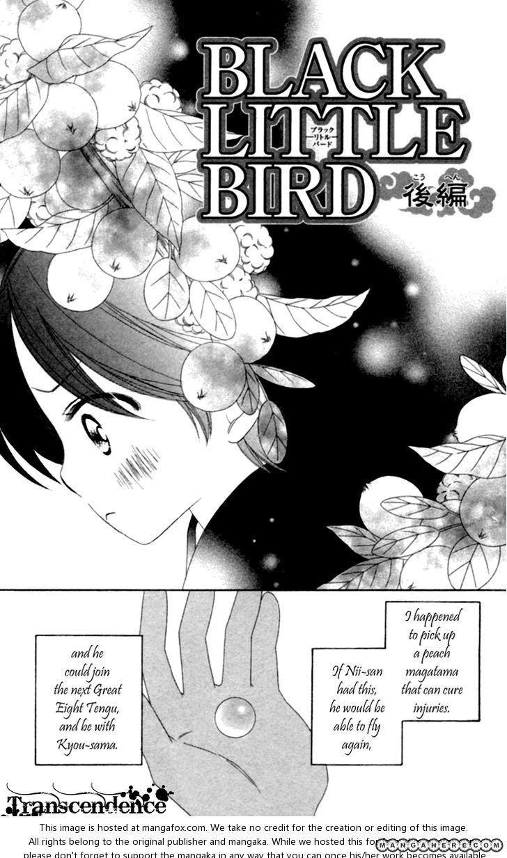 Black Bird 35.2 Page 1
