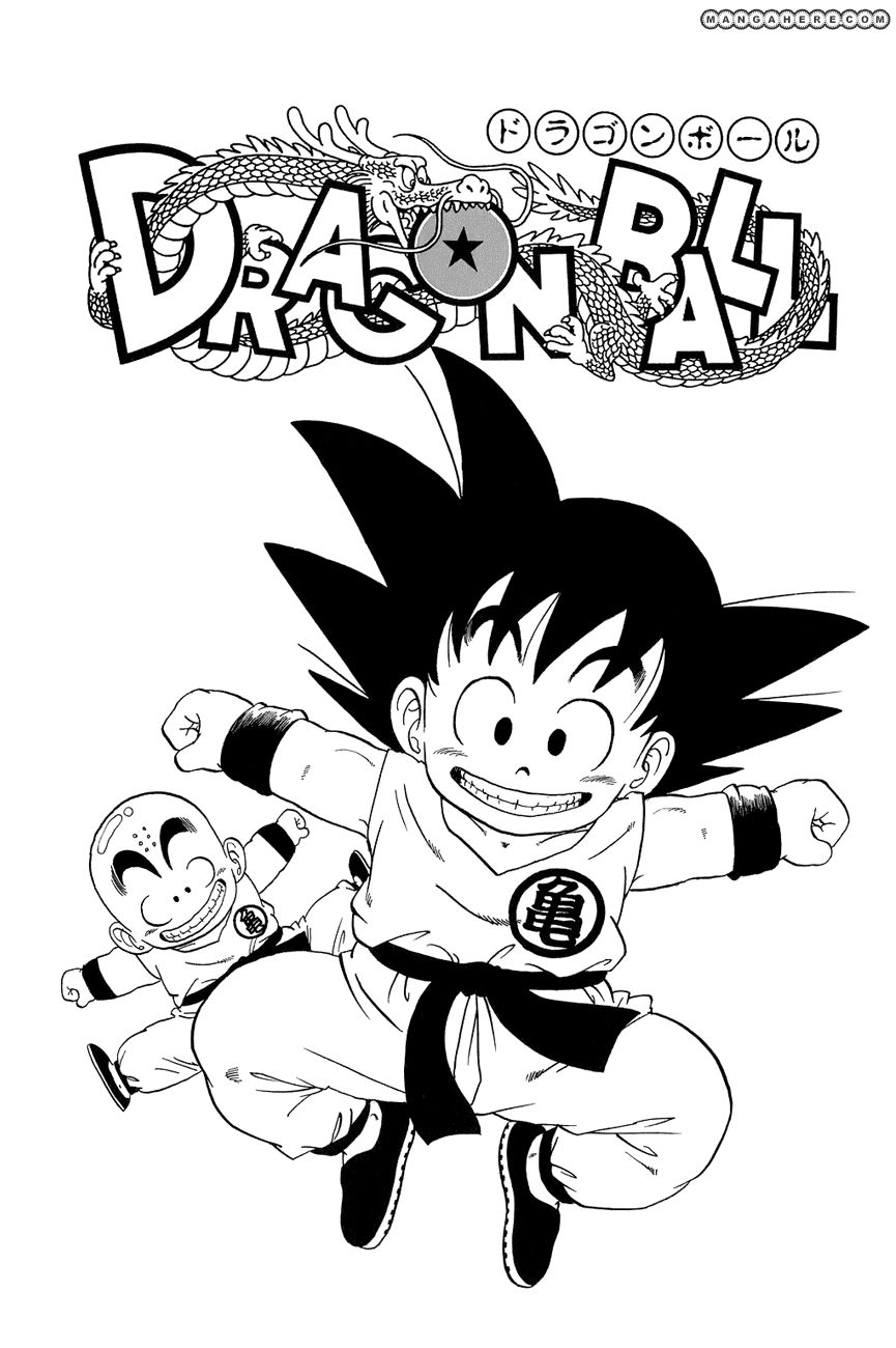 Dragon Ball 44.5 Page 3