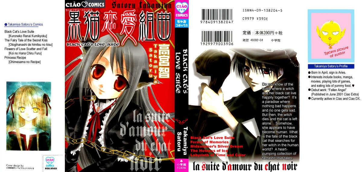 La Suite D'amour Du Chat Noir 1 Page 3