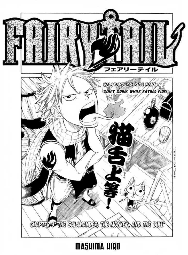 Fairy Tail 3 Page 3
