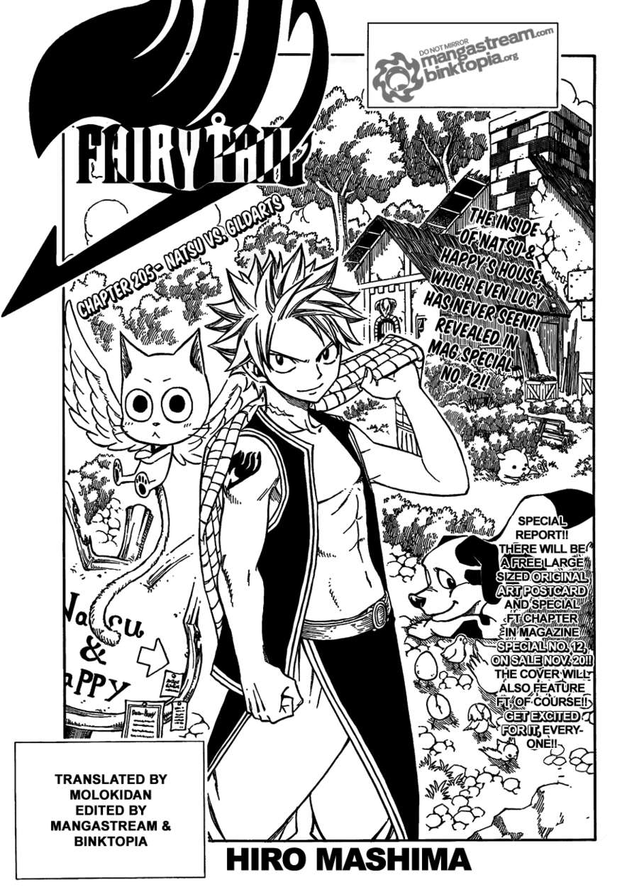 Fairy Tail 205 Page 1