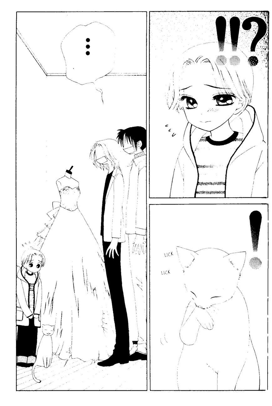 V.B. Rose 49 Page 3
