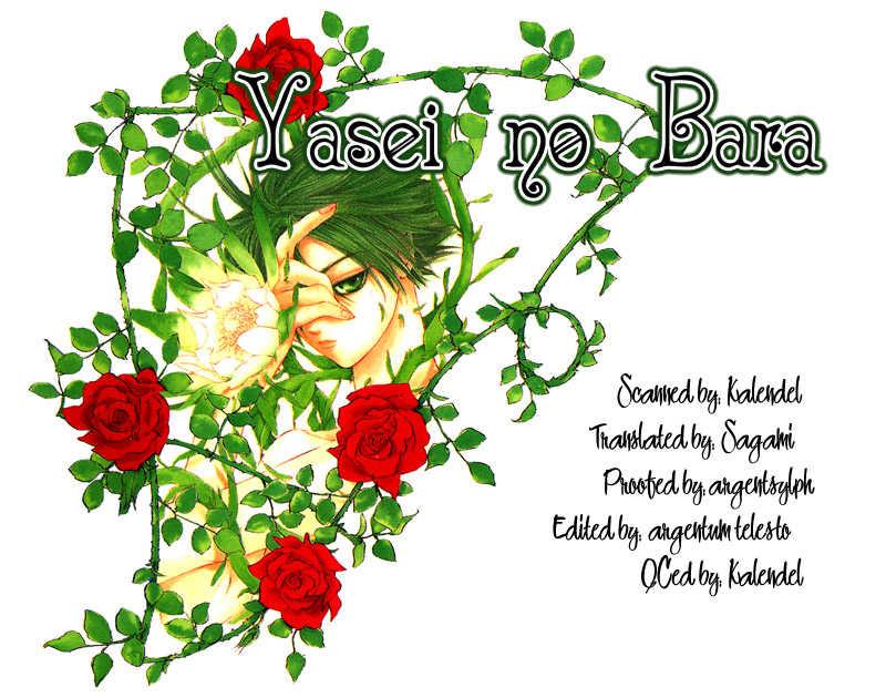 Yasei no Bara 1 Page 2