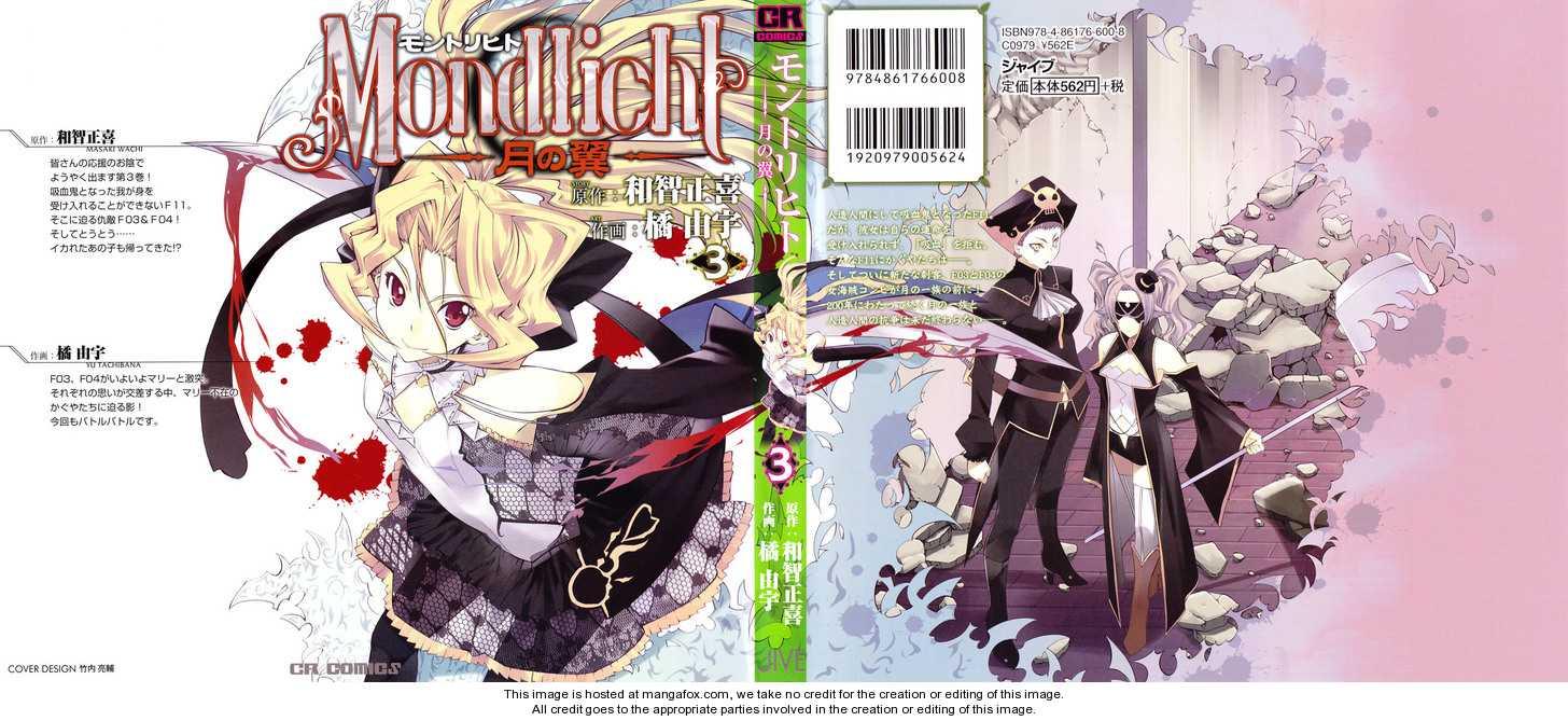Mondlicht - Tsuki no Tsubasa 13 Page 1