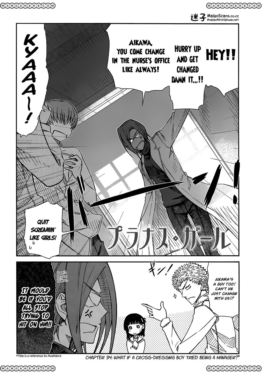 Prunus Girl 34 Page 2