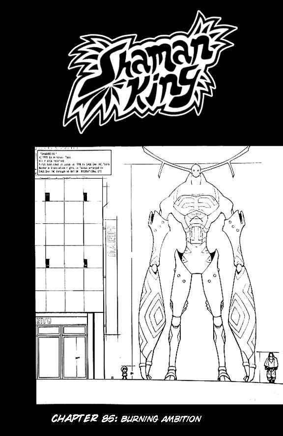 Shaman King 85 Page 4