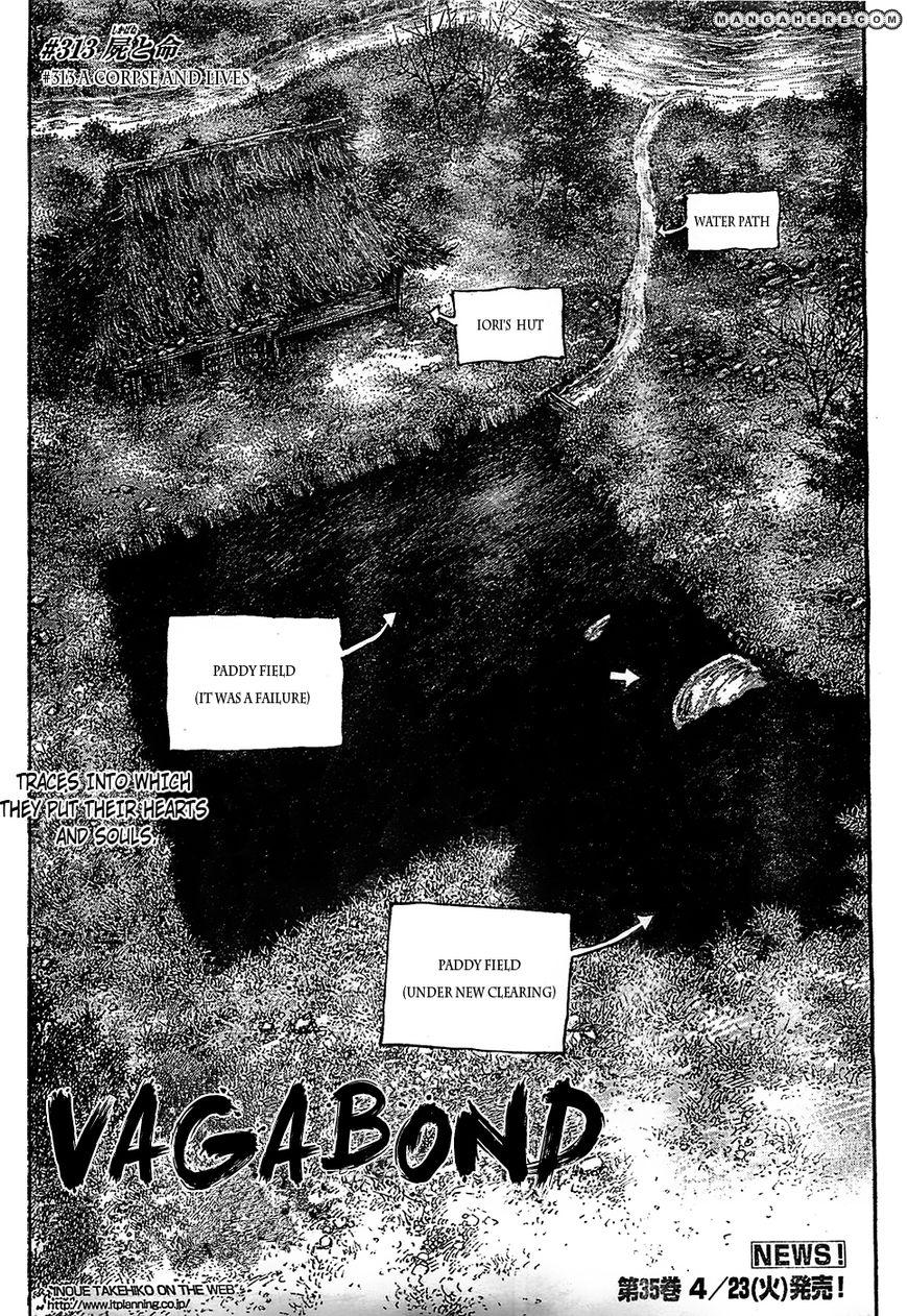 Vagabond 313 Page 3