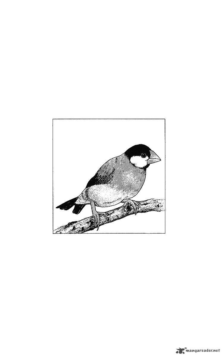 Doubutsu no Oishasan 32 Page 1