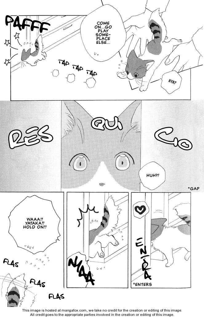 Shippo no Kimochi 9 Page 3