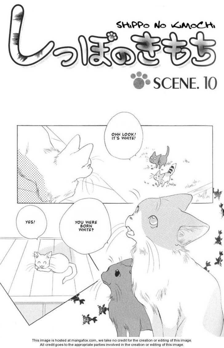 Shippo no Kimochi 10 Page 1
