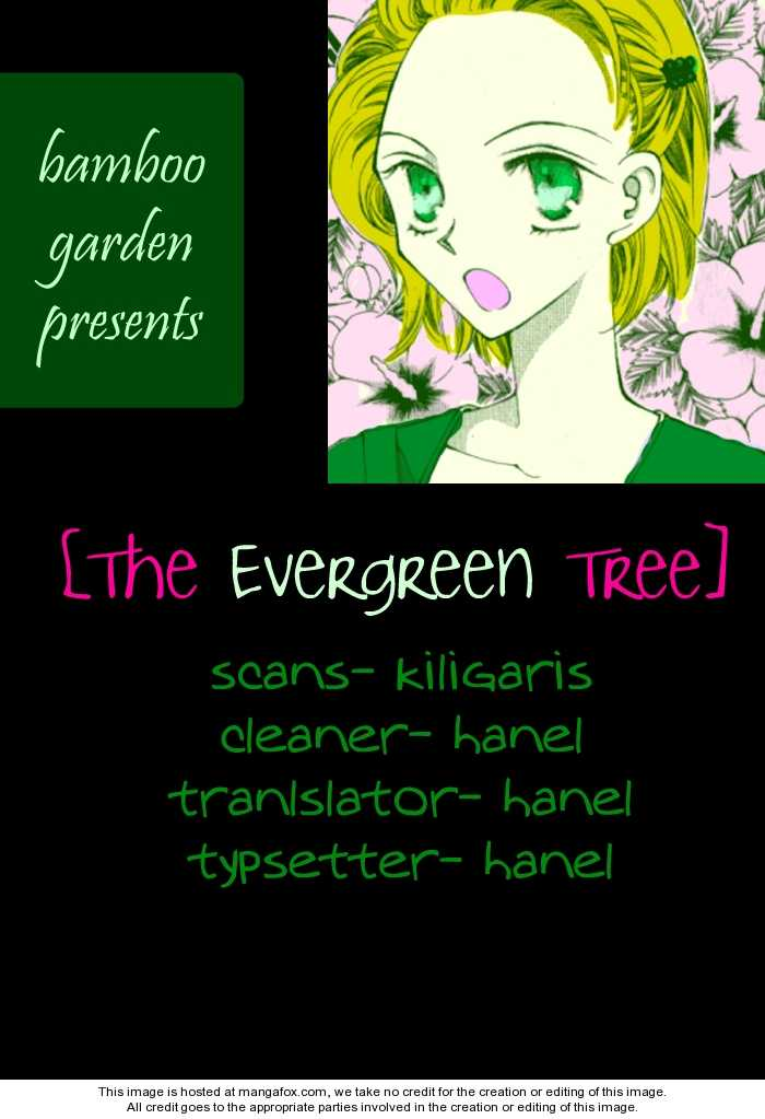 The Evergreen Tree 0 Page 1