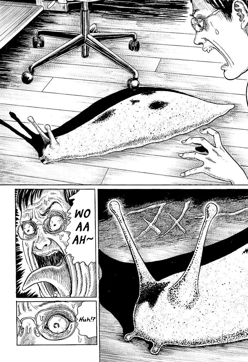 Ito Junji's Cat Diary 5 Page 2