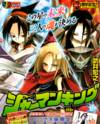 Shaman King: Remix Track
