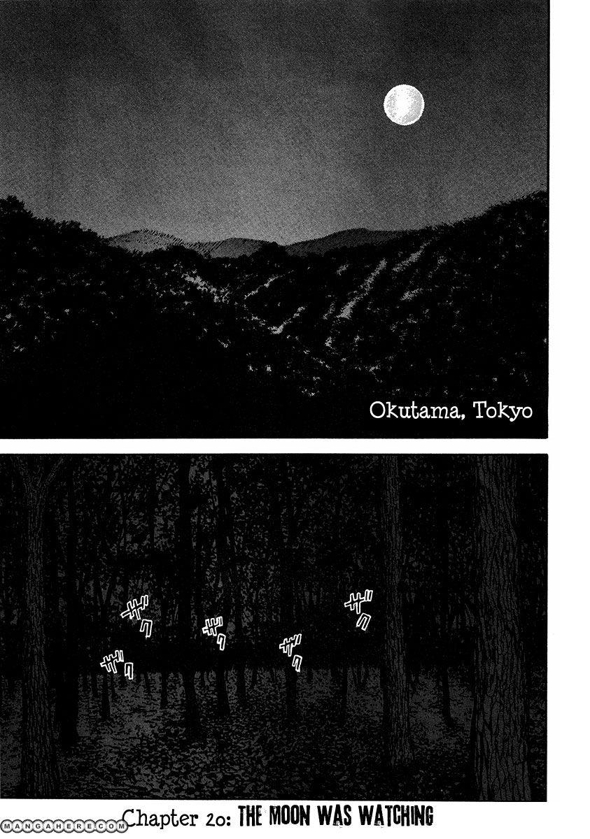Dendrobates 20 Page 2