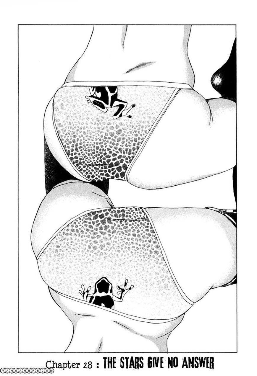 Dendrobates 28 Page 1